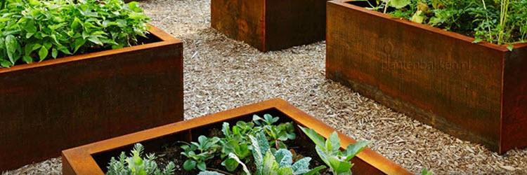 Cortenstaal plantenbakken. Zo mooi. Foto: Plantenbakken.nl