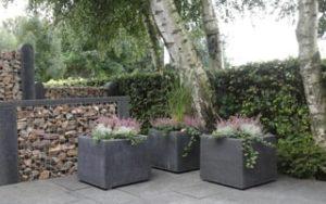 Antracietkleurige Betonnen plantenbakken. Foto: Plantenbakkenbeton.nl